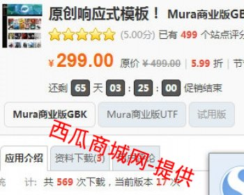 【价值298元】原创响应式模板! Mura商业版GBK+UTF8